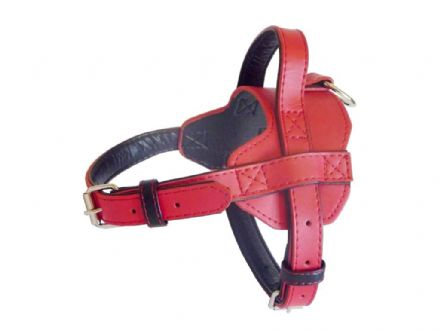 Fusion Red Harness - Large